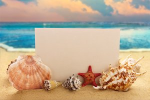 Blank paper with seashells