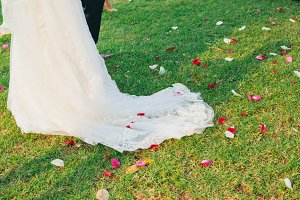 Bride walks on rose petals