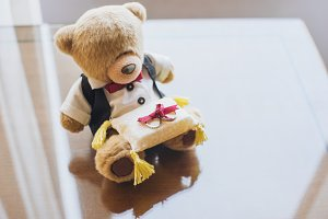 Teddy Bear Ring Bearer