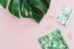 Pink workspace styled with monstera