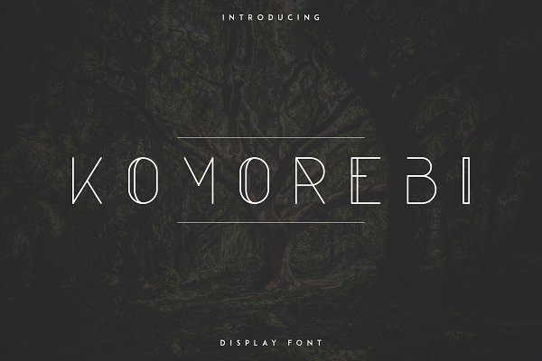 Display Fonts: Vladfedotovv - Komorebi Display Font -30%