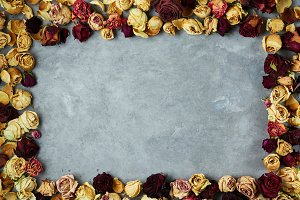 frame from dried roses buds on the gray concrete background