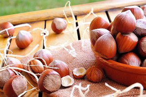Group of  hazelnuts on a table