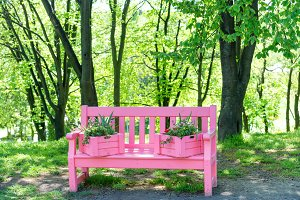 Pink bench with flowers