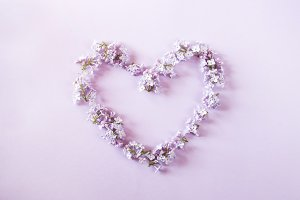 Heart made of lilac