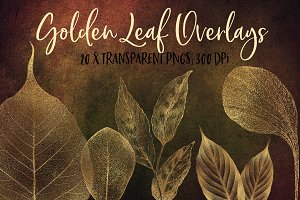 Golden leaf overlays