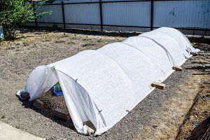 A greenhouse in the garden. Growing seedlings of vegetables in t