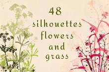 Flowers and grass silhouettes