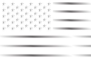 American flag silver and white