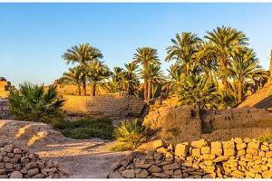 Vegetation in the Karnak Temple Complex - Luxor, Egypt