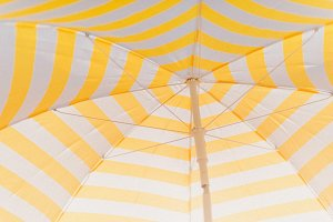 Striped yellow white parasol