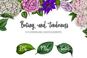 Botany and tenderness. Flowers set