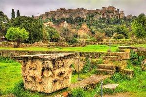 Corinthian capital at the Ancient Agora of Athens - Greece