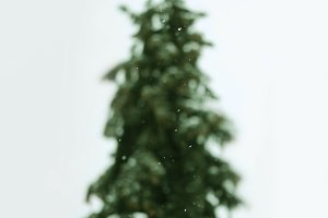 blurry christmas tree