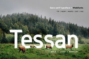 Tessan Sans - Modern Typeface + WebF