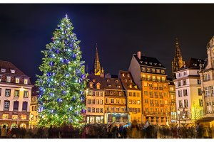 Christmas tree at the famous Market in Strasbourg, France