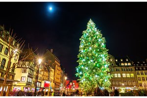 Christmas tree at the famous Market in Strasbourg