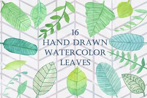 16 Handpainted Watercolor Leaves