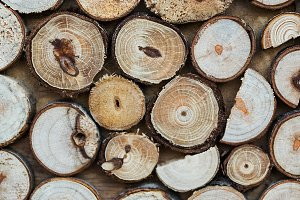 Stacked wood logs background texture