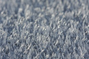 Macro of Morning Ice Crystals