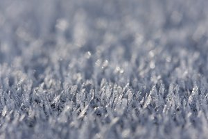 Macro of Morning Frost Crystals