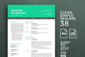 Resume Template 38