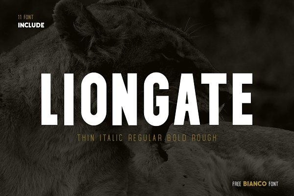 Sans Serif Fonts - Liongate