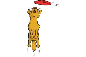 Cartoon doodle dog catches frisbee