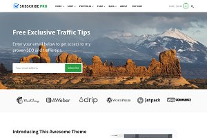 Subscribe Pro - Multi-Purpose Theme