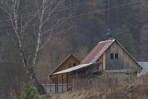 Wooden country house in forest - telephoto shot
