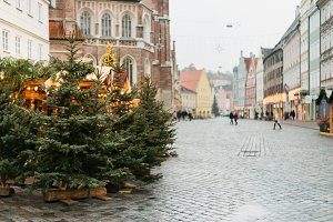 Christmas trees in Landshut, Germany