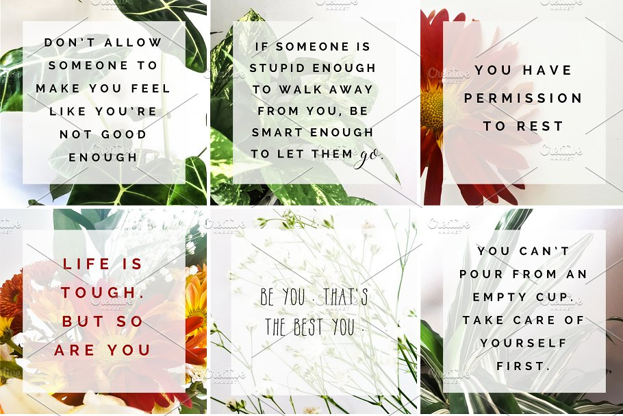 Positive Quotes Over Greenery Nature Photos Creative Market
