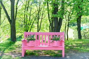 Pink bench in a park
