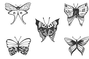Butterfly, hand drawn vector