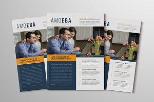 AMOEBA Newsletter