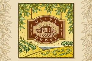 Retro Olive Grove