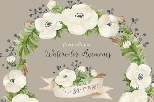 Watercolor anemones. Floral set