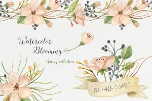 Watercolor blooming. Spring set