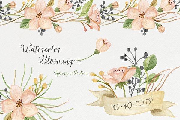 Watercolor blooming. Spring set