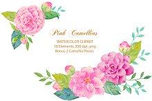 Wedding Pink Camellia Clipart