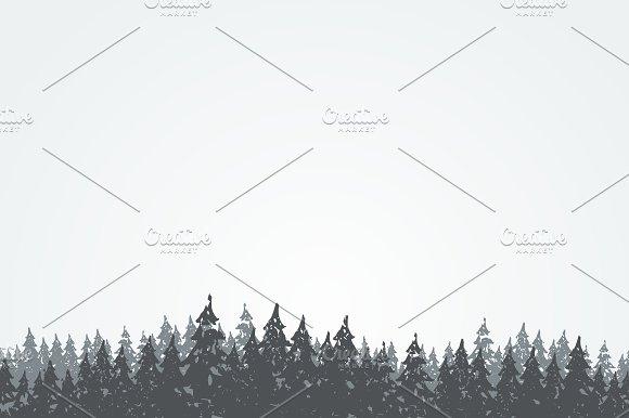 Forest landscape in Illustrations