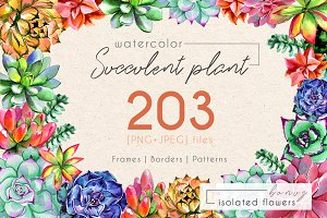 Succulent plant PNG watercolor set