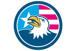 American Bald Eagle Head Flag Side C