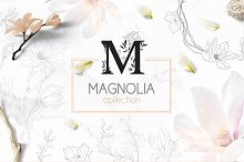 ❀Magnolia collection❀   by Ivanna-Ivashka in Objects