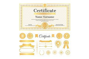 Certificate Sample with Stamps Vector Illustration