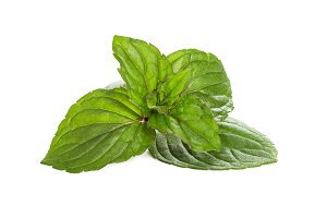 Fresh peppermint leaves
