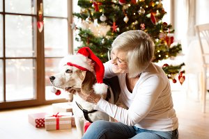 Senior woman with her dog opening Christmas presents.