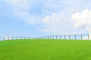 Steel fence on green grass