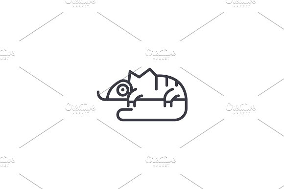 chameleon vector line icon, sign, illustration on background, editable strokes