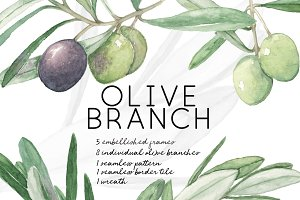 Watercolor Olive Branch Graphic Set